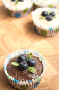 Vegan Blueberry Cupcakes with Chocolate Icing