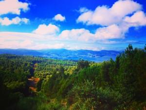Camino De Portugues