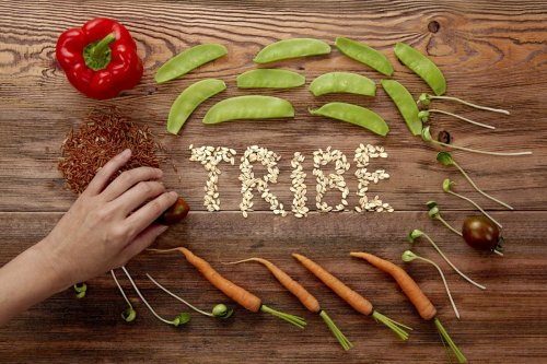 Vegan Tribe